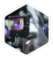 IntraVital Microscopy
